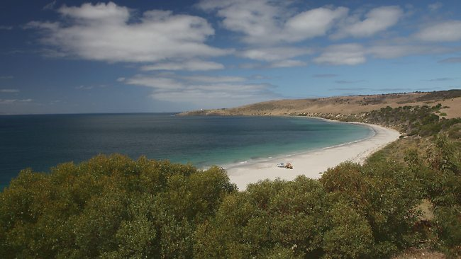 Kangaroo Island marine sanctuary.Picture: Vanessa Hunter