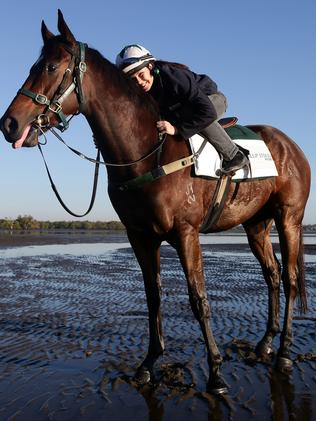 Katie McManmon rides Hucklebuck at Nudgee Beach before the Stradbroke Handicap. Picture: Peter Wallis