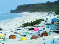 More than 3500 pieces of rubbish are washed up on Henderson Island every day.