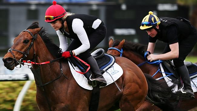 Strapper Kate O'Brien aboard Irish sprinter Gordon Lord Byron at Canterbury. Picture: Toby Zerna