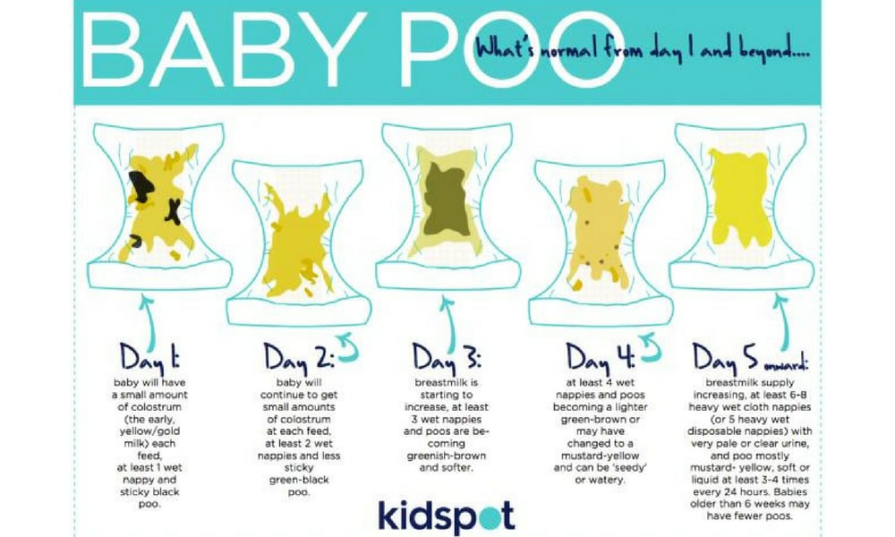 Frequency  sc 1 st  Kidspot & How many days can a baby go without pooing? - Kidspot islam-shia.org