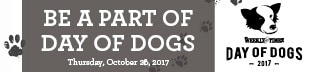 Day of Dogs316×72