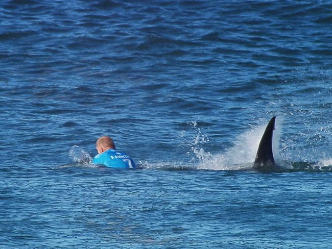 Mick Fanning's infamous encounter with a shark.