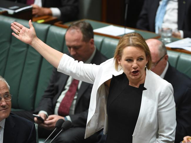 Federal Minister for Health Sussan Ley. Picture: AAP