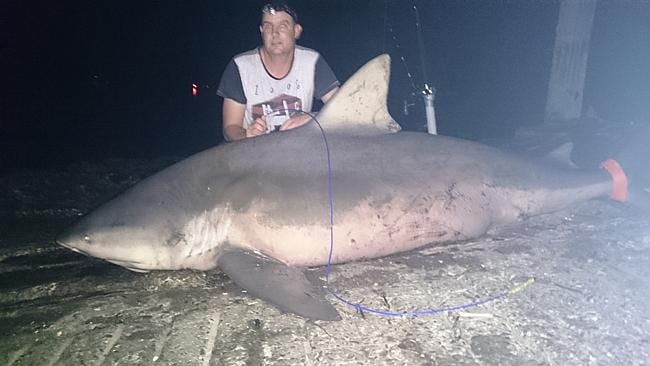 The huge 250kg bull shark recently caught in the Hastings River near Port Macquarie by De