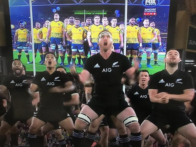 All Blacks perform haka at Suncorp Stadium