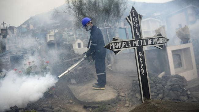 A specialist fumigates the Nueva Esperanza graveyard in the outskirts of Lima to prevent the spread of the Chikunguya and Zika virus, which affect several South American countries. Picture: AFP/Ernesto Benavides
