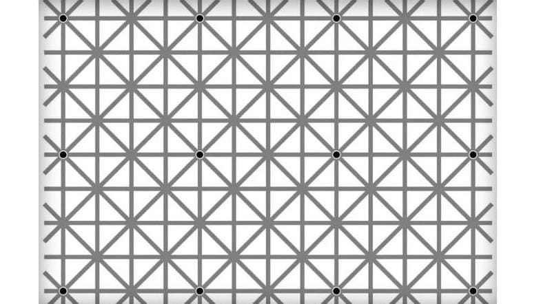 Black Dot Puzzle: Why You Can't See All The Black Dots In