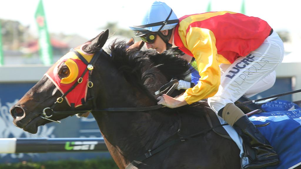 American Diva, who won at the Gold Coast on Saturday, takes out a race at Doomben in 2016. Photo: Jono Searle.