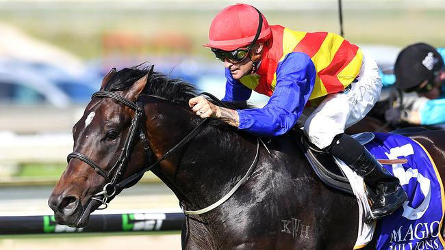 Randwick Guineas runner-up Pierata will skip the rest of the autumn. Picture AAP