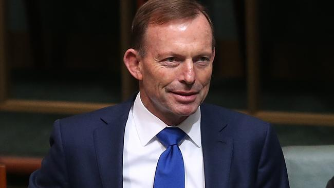 Tony Abbott in question time. Picture: Kym Smith.