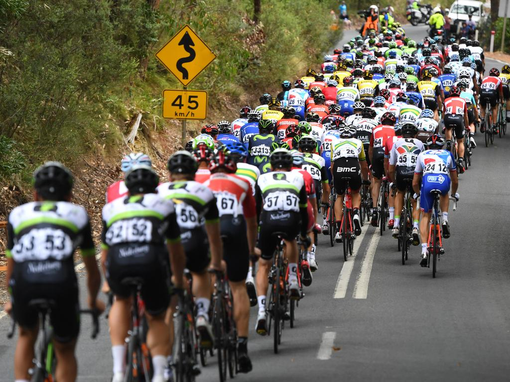 Packed field ... the peloton rides through the Adelaide Hills during Stage 2 of the Tour Down Under. Picture: Dan Peled (AAP)