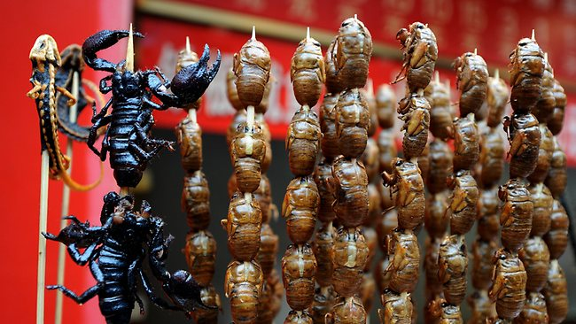 Lizards, scorpions and bugs available to adventurous eaters at a food stall in the Wangfujing shopping street of Beijing. PIcture: Mark Ralston