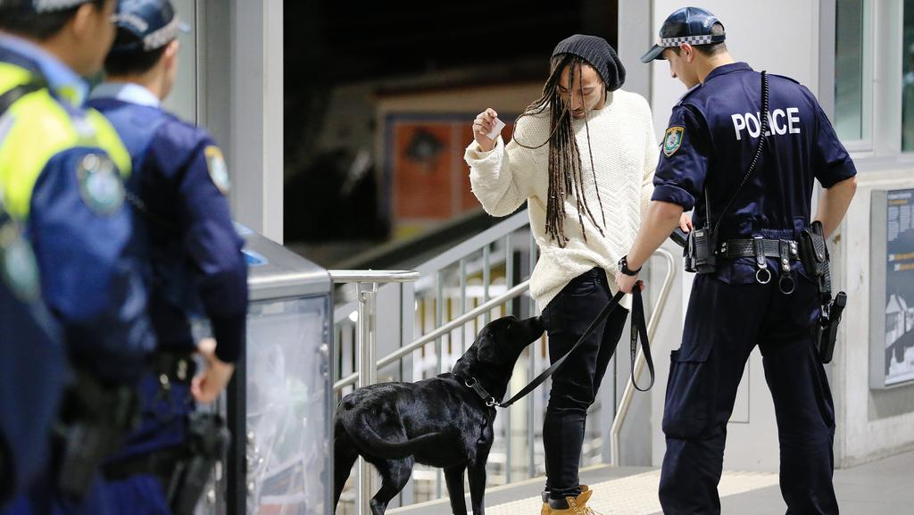 Working With Drug Detection Dogs Jobs In Australia