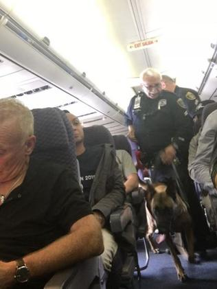 Sniffer dogs checked the plane after the incident. Picture: Facebook/Cathy Cole