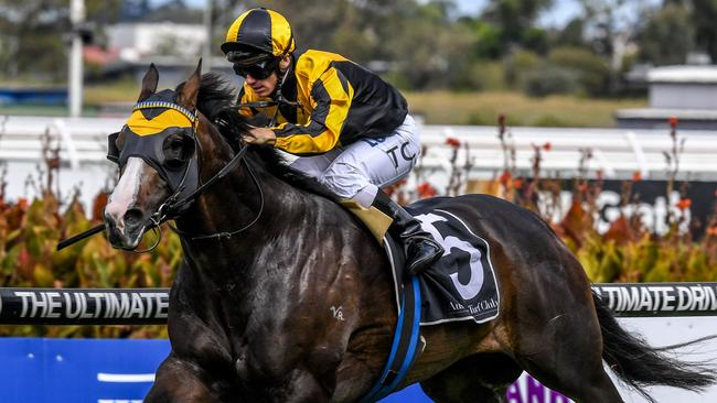 Trapeze Artist finished fourth to Kementari in the Hobartville Stakes.