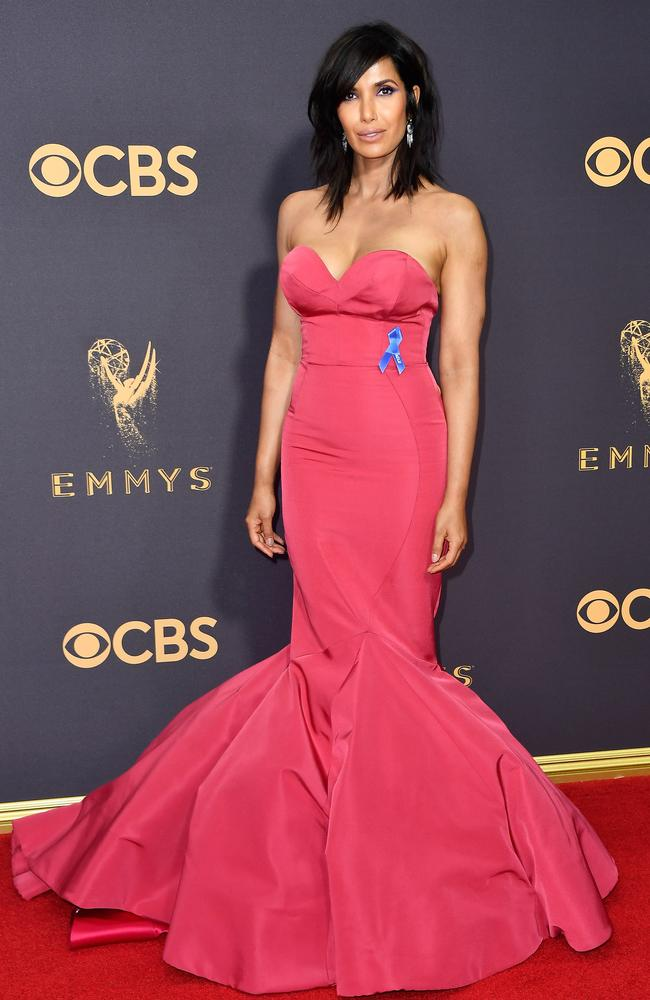 LOS ANGELES, CA - SEPTEMBER 17: TV personality Padma Lakshmi attends the 69th Annual Primetime Emmy Awards at Microsoft Theater on September 17, 2017 in Los Angeles, California. (Photo by Frazer Harrison/Getty Images)