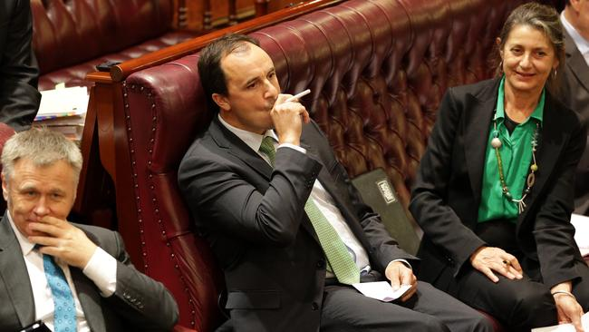 Cannabis confession: Greens MP Jeremy Buckingham admits to eating hemp food product