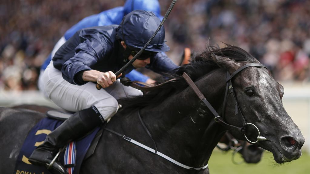 ASCOT, ENGLAND — JUNE 23: Ryan Moore riding Caravaggio (L) win The Commonwelth Cup on day 4 of Royal Ascot at Ascot Racecourse on June 23, 2017 in Ascot, England. (Photo by Alan Crowhurst/Getty Images for Ascot Racecourse)