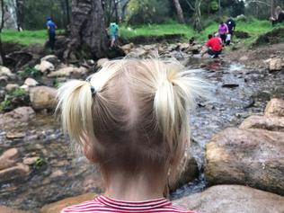 Supplied Editorial Morialta Conservation Park nature playground