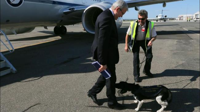 "Perhaps the nick name ""Rudd dog"" is finally catching on? Picture: Lyndon Mechielsen"