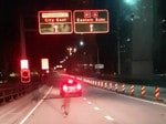 Police have responded to an unexpected call for assistance this morning after a wallaby was spotted crossing the Sydney Harbour Bridge. Officers from Harbourside and North Shore local area commands were called to the bridge just before 5am (Tuesday 16 January 2018) after the marsupial was spotted in lane eight on the northern side of the bridge.