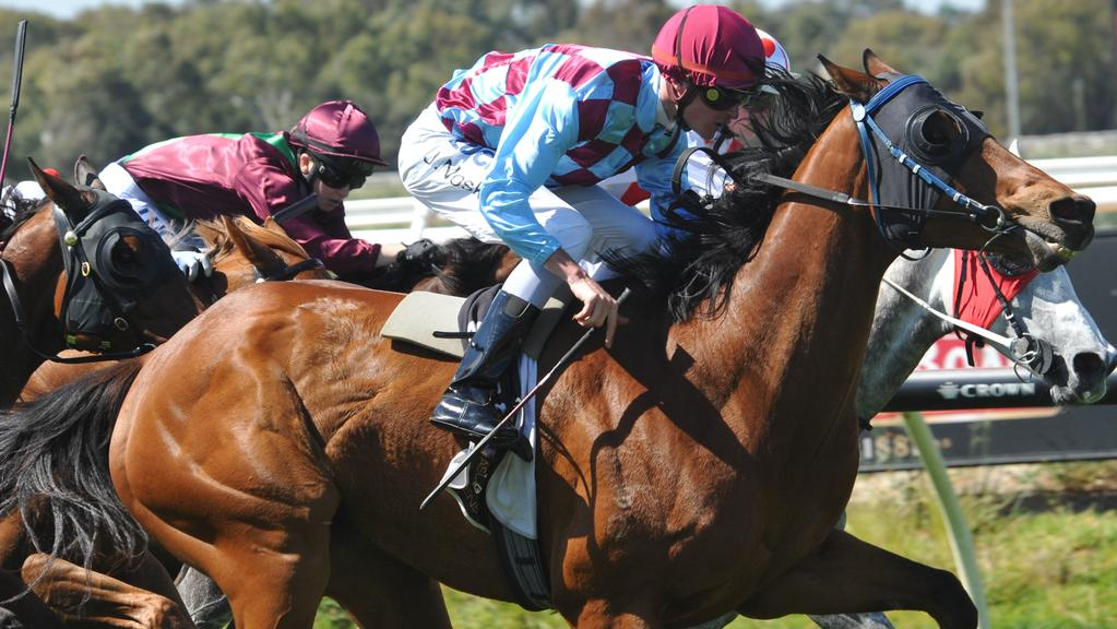 Thoroughbred racing is headed to Ascot racecourse on Good Friday in an Australian first.