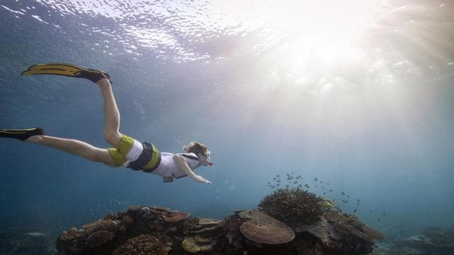 Not a hard sell. From Tourism Australia's Coastal and Aquatic experiences campaign — snorkelling on the Great Barrier Reef. Picture: Tourism Australia