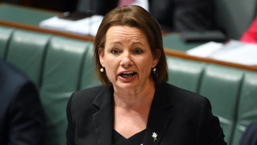 "Health Minister Sussan Ley has announced a process to replace Medicare's 30-year-old payments system ""based on existing commercial technology"". Picture: Mick Tsikas."