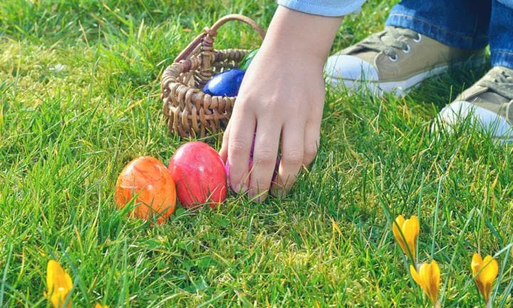 Easter kidspot 12 fun learning activities using easter eggs negle Images