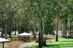 <p>Jan 13: Flooded camp and picnic area at Somerset Dam Pic: Beryce Nelson</p>