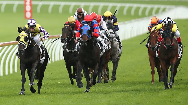Pierro (centre in red and blue) thunders down the middle of the Randwick track in what was his last career run in The Doncaster on Saturday. Eventual winner Sacred Falls is on the left. Picture: Mark Evans