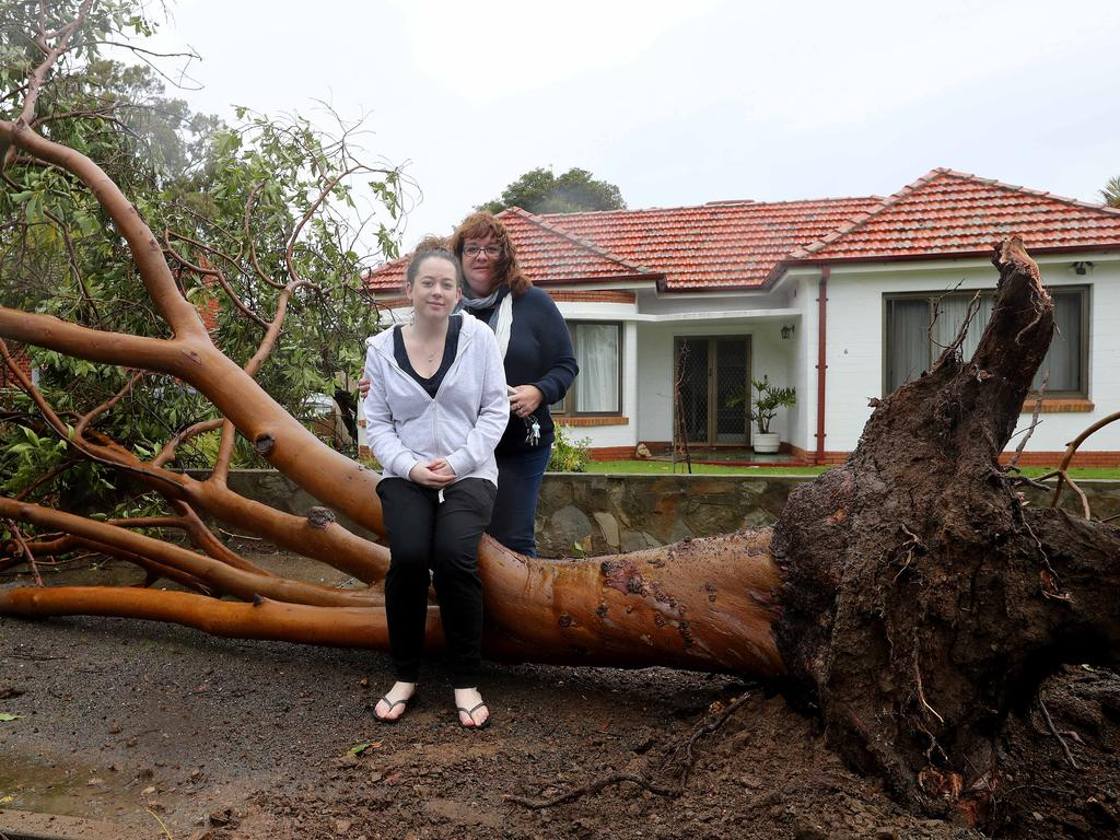 windiest in years in sa more severe weather on the windiest in 30 years in sa more severe weather on the way daily telegraph