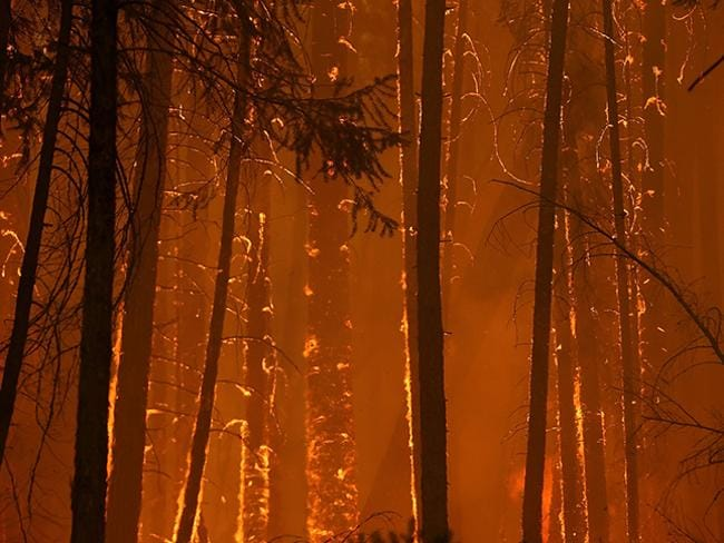 The blaze burns out of control near Yosemite National Park. Picture: Getty