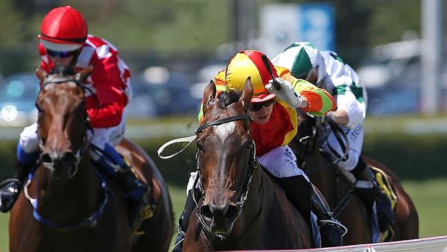 The in-form Lankan Rupee has plenty of admirers to continue his winning run. Picture: George Salpigtidis