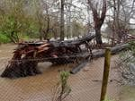 The Onkaparinga river bursts its banks and starts to flood property in Hahndorf. Picture: Mark Brake