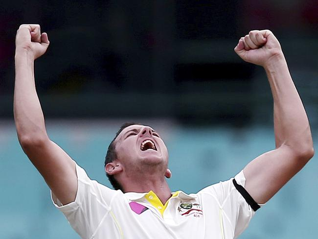 Josh Hazlewood is tipped for a huge summer. (AP Photo/Rick Rycroft, File)