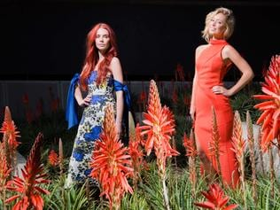 MSFW Gale Preview