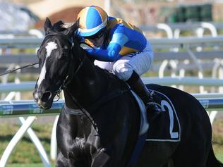 Music Magnate winning the Victory Stakes at Eagle Farm. Picture: Natasha Wood, Trackside Photography