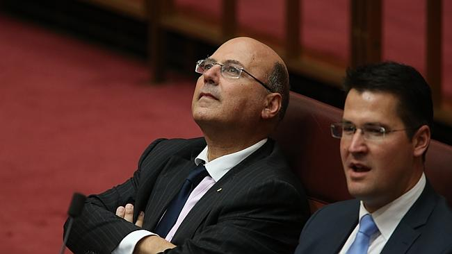 Senator Arthur Sinodinos has the backing of the Prime Minister.