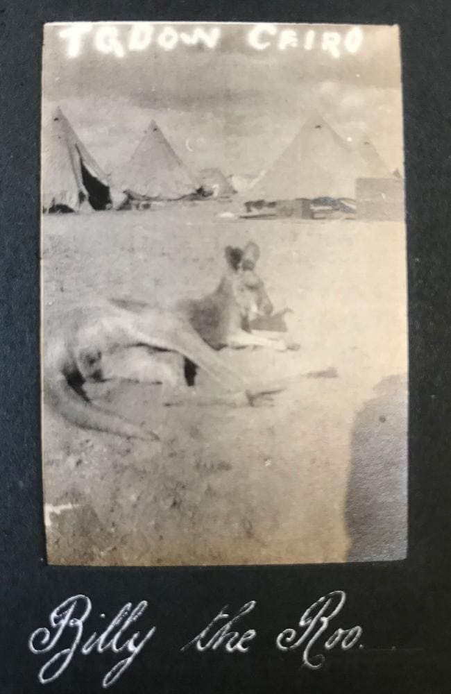 Incredibly, the Aussie soldiers travelled with a mascot kangaroo, which Jack pictured in Egypt.