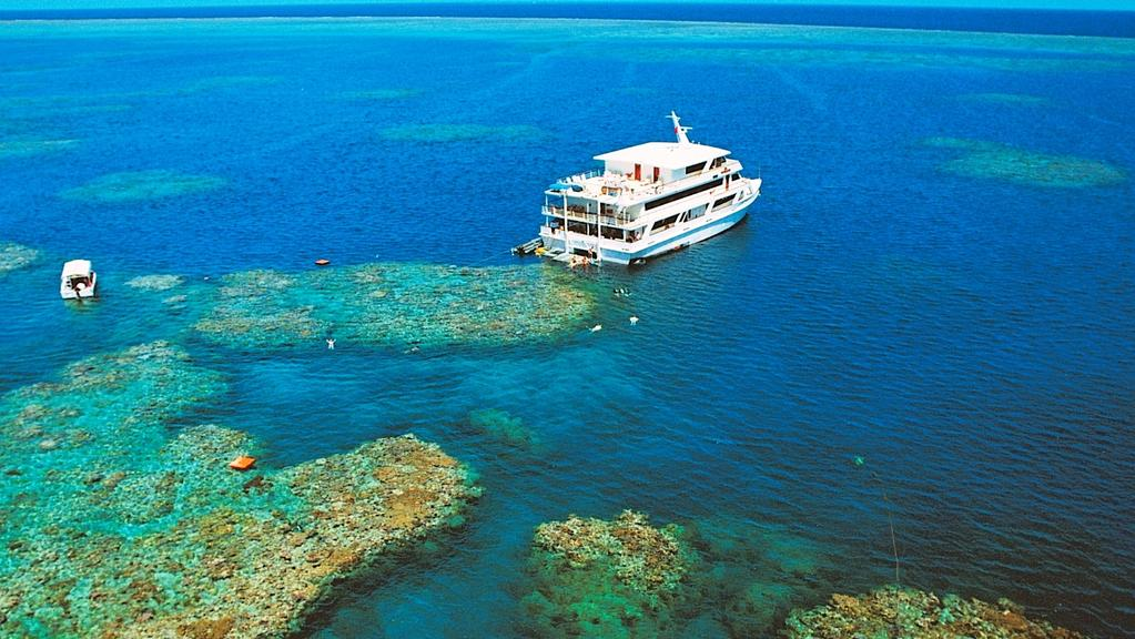 Tourists diving on the Great Barrier Reef in Queensland. Image supplied