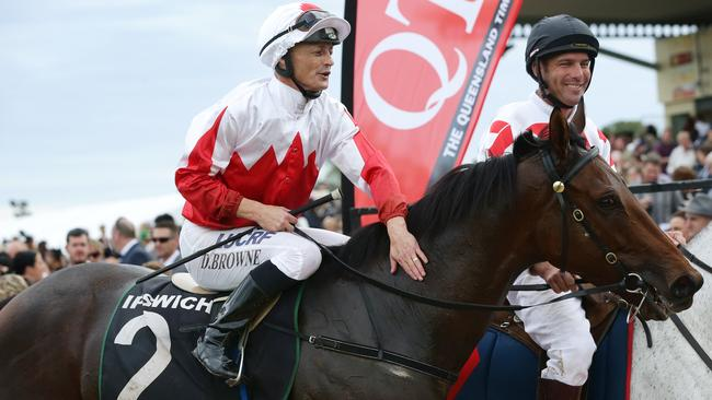 Maurus is coming right at the right time, says trainer John Thompson. Picture: Liam Kidston
