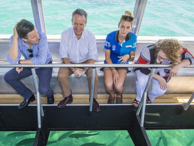 Labor leader Bill Shorten visits the Great Barrier Reef. Picture: Jason Edwards