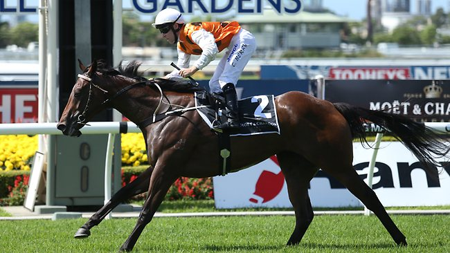 Overreach charges to a super impressive win in the Moet and Chandon Stakes to strengthen his favouritism on the Golden Slipperl. Picture: Taylor Adam
