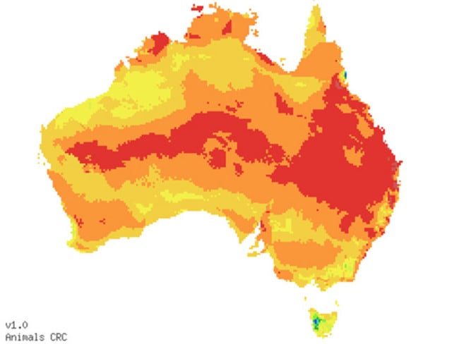 Fire Ants In Australia Map Shows How Our Way Of Life Could Be - Map of where fire ants are found in the us