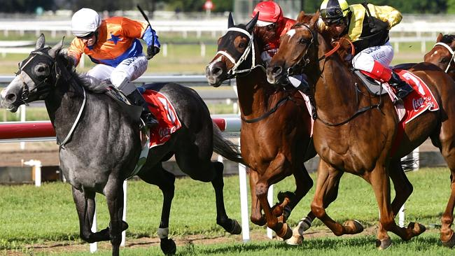 The Storeman (grey) maintains a tiny break as his rivals quickly close in near the post. Picture: Darren England