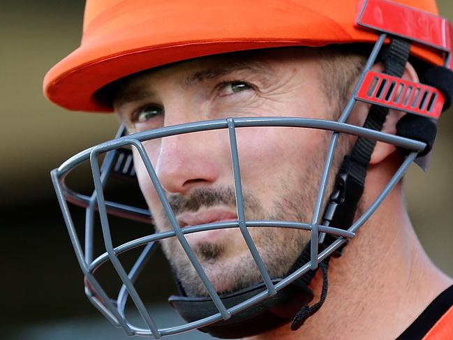 Why Scorchers are Big Bash kings