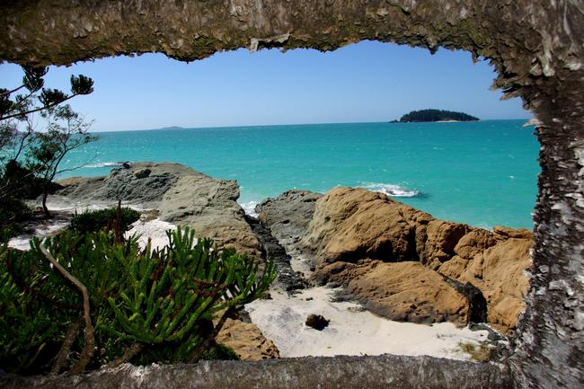 <b>5. WHITSUNDAY ISLAND, QUEENSLAND:</b> Some people don't believe this photo is real. As I climbed over some rocks, I got a glimpse of the blue sea through the branches of a native palm. I just had to capture it! Such an amazing place, yet people 300m down the beach never saw this beautiful scene. Picture: Alec Poulton, Victoria