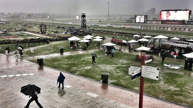Chaos ... rain delays the races at Flemington and sends spectators running for cover. Picture: George Salpigtidis